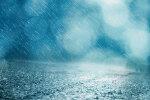 비 오는 날 더 아픈 관절통 단월드 접시돌리기와 관절을 건강하게!!!
