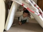요즘 우리 아이가 좋아하는 놀이 (2)