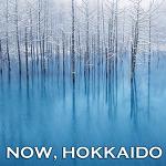 일본 북해도여행 가이드북 | 지금 홋카이도