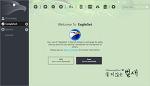 VPN 관련 Luminati Net Updater 서비스가 추가된 EagleGet 다운로더 프로그램 정보 (2018.8.17)
