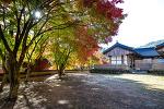 가을의 마곡사