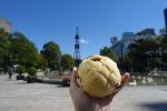 홋카이도 미쯔코시 빵집 삿포로 죠안 Johan 한정 '구운 버터 흑당롤 메론빵'