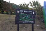 개삼터공원에 찾아온 금산의 가을
