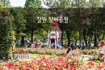 창원 장미공원, 계절의 여왕 5월! 장미축제 시작!