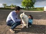 생후 17개월 동물탐색 (3): 소, 거위, 저먼 세퍼드