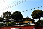 ( 군산 여행) 보존 가치가 높은 군산 신흥동 일본식가옥(히로쓰 가옥)