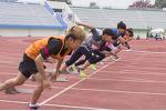 체육의 길, 스포츠의 길, 그리고 운동의 길