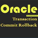 [Oracle] Transaction이란?