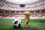 2018 러시아 월드컵 우승은 누구? 월드컵 순위