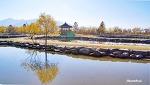 낙동강변 삼락공원의 만추