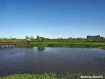 [시선] 어느 5월 화창한 오후 풍경