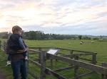 생후 17개월 동물탐색 (2): 집 근처 농장에서 만난 말과 양