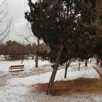 February Snow 2월의 눈