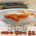(자취집밥 유선생) 야마야 명란 튜브와 함께 한 오늘의 저녁 식사~!