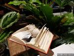 책과 라이프스타일을 파는 서점의 변화