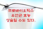 프로바이오틱스 유산균 효능 추천 단점