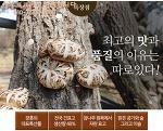 말린표고버섯판매/ 장흥표고버섯농장에서 질좋고 품질좋은 표고버섯으로 보내드리고 있습니다