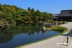 교토 여행: 부모님과 함께하는 일본 교토 여행 일정 & 경비