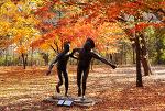 [서울 가볼만한 곳] 올림픽공원 단풍, 장미