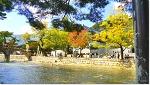 통도사 개산제와 가을 풍경