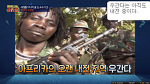르완다 대학살 사건 (르완다 집단살해 Genocide in Rwanda:) 설명, 제노사이드(genocide) 대표적 사례