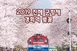 진해 군항제 경화역 벚꽃터널, 봄에만 기차를 만날 수 있는 곳