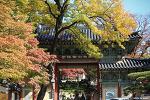 길상사 가을소경 | 서울 단풍명소, 서울 가볼만한곳