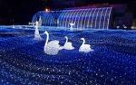 겨울 국내 여행지 베스트 10 화려한 축제와 이벤트