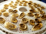 식품건조기 바나나칩 만들기