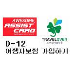 [CHOKO] D-12 여행자보험 가입하기