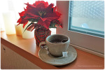 추운겨울에 따뜻한 작두콩차 한잔< 작두콩 차. 차. tea. 비염에 좋은차. 티백, 한국유기농, 작두콩 >