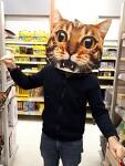 나는 고양이씨!