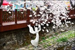 ( 진해 벚꽃 여행 ) 진해군항제 경화역-해군사관학교-여좌천-솔라타워