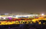 서울억새축제와 전국 억새 축제는 어떠한 것이 있을까
