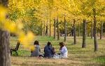 가을에 가볼만한곳으로 먹기리 풍성한 축제 여행