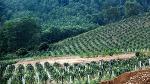 베트남풍경
