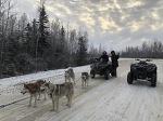 11월 [알래스카 개썰매 투어] Dog Sledding in Fairbanks in November [페어뱅크스 여행] [알래스카 패키지 관광]