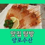[맛집 탐방] 독도 새우는 독도에서만 먹는 게 아니다! 독도 새우, 대게 대구 맛집, 양포수산