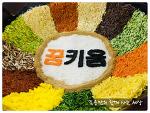 전주 한지산업지원센터 방문, 전주 비빔밥! 전주 한옥 마을, 최고예요!^^