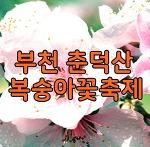 2018년부천춘덕산복숭아꽃축제 복사꽃구경가야겠어요.