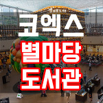 코엑스 별마당 도서관 위치, 콘서트, 이벤트 총정리