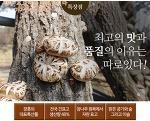 장흥표고버섯농장에서 신선하고 맛있는 향이 진한 표고버섯으로 보내드리고 있습니다