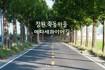 창원 죽동마을 메타세콰이어길, 예쁜 드라이브 코스