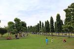 [인도네시아 / 발리 / 뿌뿌탄 광장] 발리 -  덴파샤르 # 뿌뿌탄 광장 산책 2017 (다섯째날)