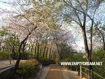 배봉산 둘레길, 장안벚꽃길 연결해서 산책하기