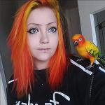 앵무새와 똑같은 색상으로 염색한 반려인
