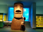 2018/11/04/SUN <뉴욕에서의 마지막 날> - 미국 여행(뉴욕 자연사박물관, 메트로폴리탄 뮤지엄) *