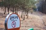 [흡연자필독] 어린이집, 유치원 근처 10m이내 금연 (부제. 위반자 과태료 10만원)