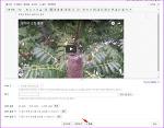 다음 블로그 게시글에 유튜브 동영상 삽입해서 공유하는 방법