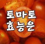 토마토효능과 토마토하루2개 먹는습관 길러요